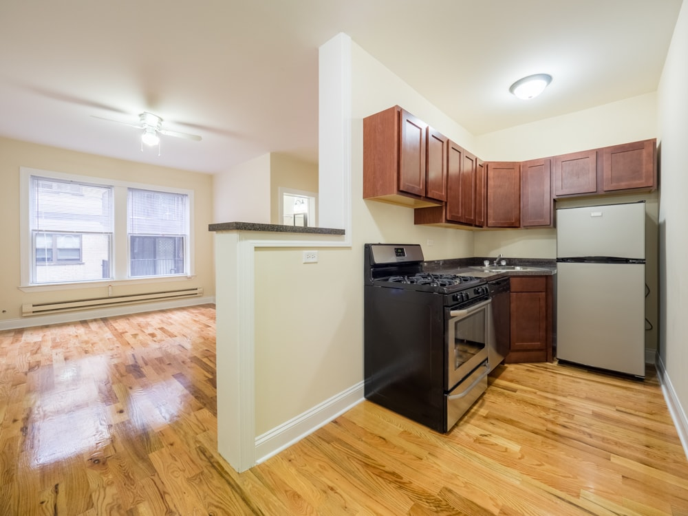 Renovated One Bedroom - Kitchen